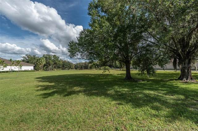 3908 Cove Lake Place, Land O Lakes, FL 34639 (MLS #T3273353) :: Delgado Home Team at Keller Williams