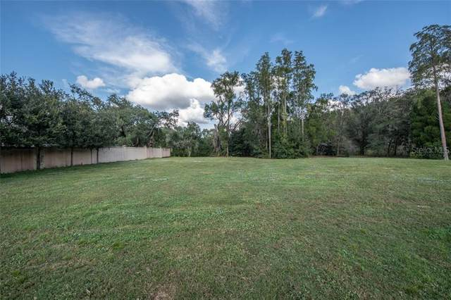 4024 Cove Lake Place, Land O Lakes, FL 34639 (MLS #T3273359) :: Baird Realty Group