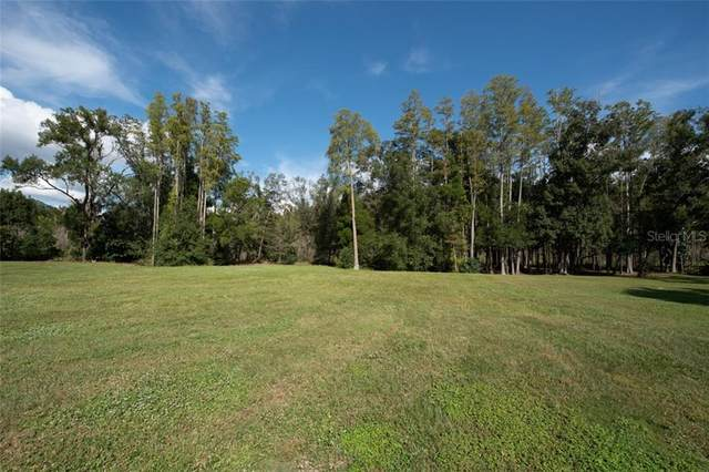 4018 Cove Lake Place, Land O Lakes, FL 34639 (MLS #T3273365) :: Baird Realty Group