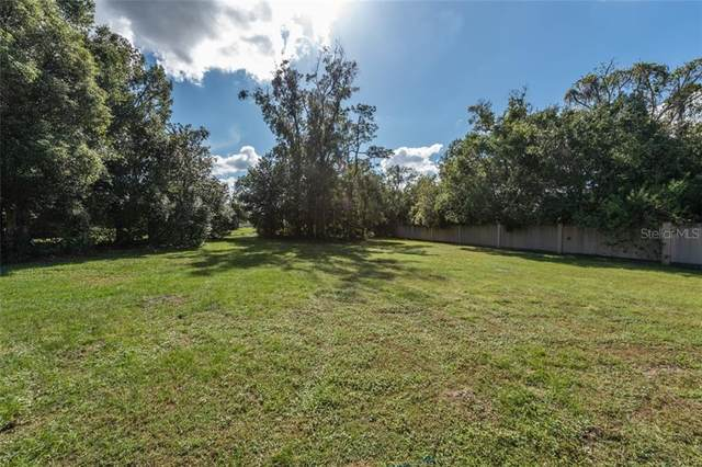 4019 Cove Lake Place, Land O Lakes, FL 34639 (MLS #T3273371) :: Sarasota Home Specialists