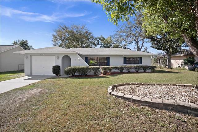 3365 Agar Avenue, Spring Hill, FL 34609 (MLS #T3273390) :: Premium Properties Real Estate Services