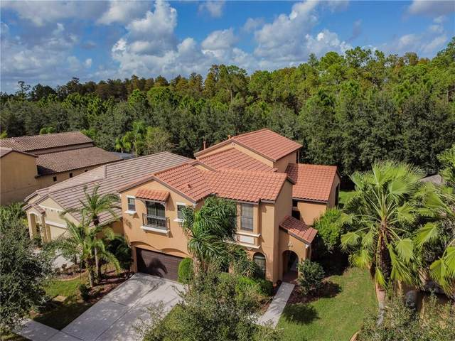 8264 Dunham Station Drive, Tampa, FL 33647 (MLS #T3273410) :: Young Real Estate
