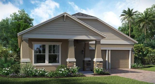 2365 Camden Park Avenue, Davenport, FL 33837 (MLS #T3273450) :: Pristine Properties