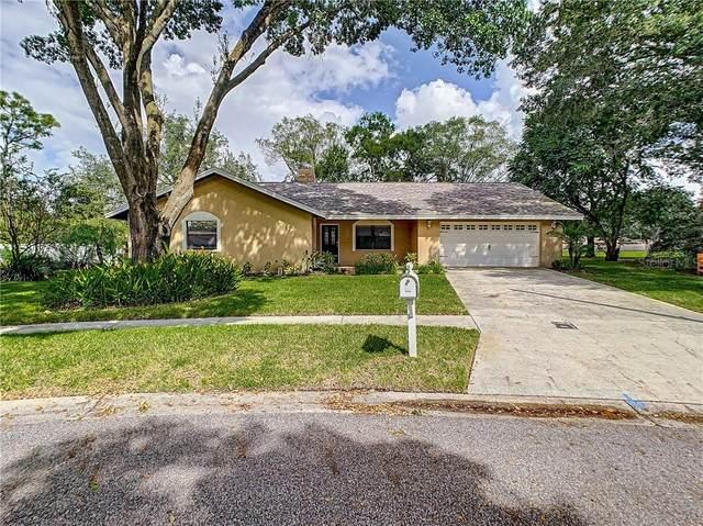 2018 Sycamore Lane, Plant City, FL 33563 (MLS #T3273452) :: Real Estate Chicks