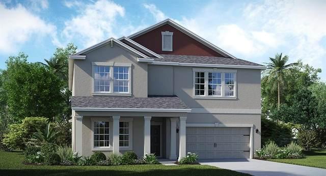 2388 Camden Park Avenue, Davenport, FL 33837 (MLS #T3273459) :: Pristine Properties