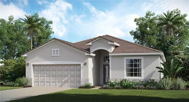 6658 Clairborne Lane, Bradenton, FL 34211 (MLS #T3273487) :: Premier Home Experts