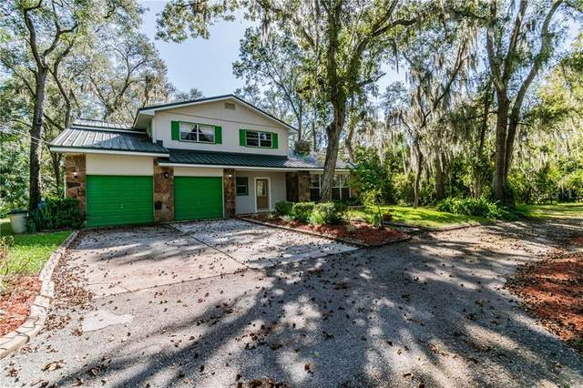 7420 Whitehouse Drive, Riverview, FL 33569 (MLS #T3273542) :: GO Realty