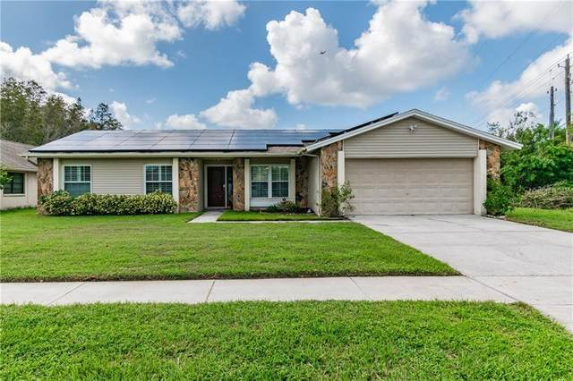 16322 E Course Drive, Tampa, FL 33624 (MLS #T3273549) :: Godwin Realty Group