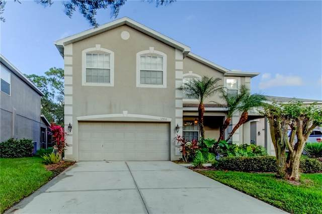 12402 Rustic View Court, Tampa, FL 33635 (MLS #T3273563) :: Griffin Group