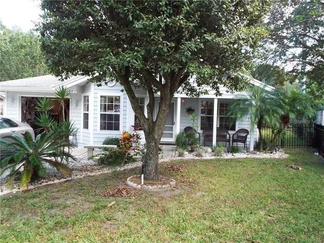 1742 Dorset Drive, Mount Dora, FL 32757 (MLS #T3273569) :: Armel Real Estate