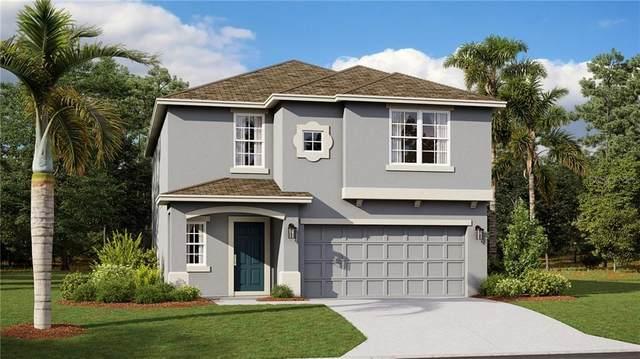 2920 Atlas Cedar Drive, Ocoee, FL 34761 (MLS #T3273581) :: Bustamante Real Estate