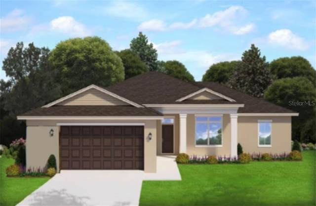 15563 Mccomb Circle, Port Charlotte, FL 33981 (MLS #T3273583) :: Homepride Realty Services