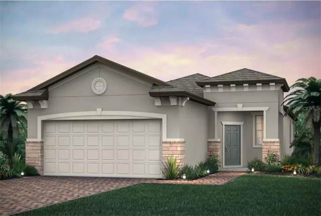 19587 Ship Wheel Way, Land O Lakes, FL 34638 (MLS #T3273584) :: Bustamante Real Estate