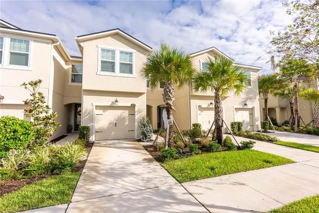 11714 Cambium Crown Drive, Riverview, FL 33569 (MLS #T3273626) :: Pristine Properties