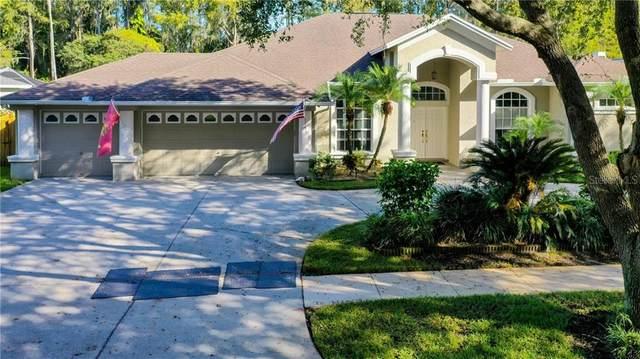 5605 Macallan Drive, Tampa, FL 33625 (MLS #T3273637) :: Pristine Properties