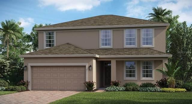 2213 Mountain Pine Street, Ocoee, FL 34761 (MLS #T3273659) :: Bustamante Real Estate
