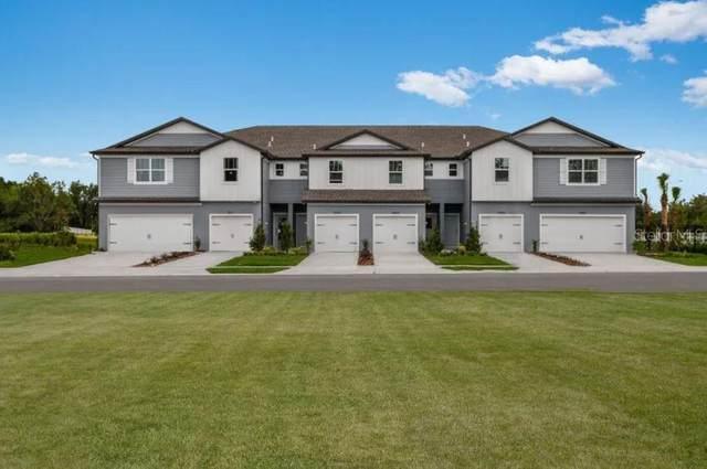 19680 Shady Oak Dr, Land O Lakes, FL 34638 (MLS #T3273684) :: Pristine Properties