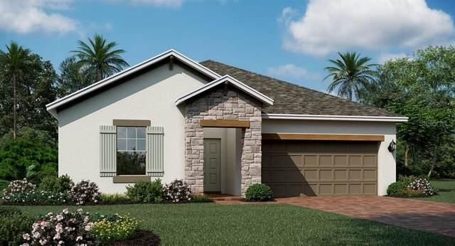 2261 Mountain Pine Street, Ocoee, FL 34761 (MLS #T3273693) :: Bustamante Real Estate