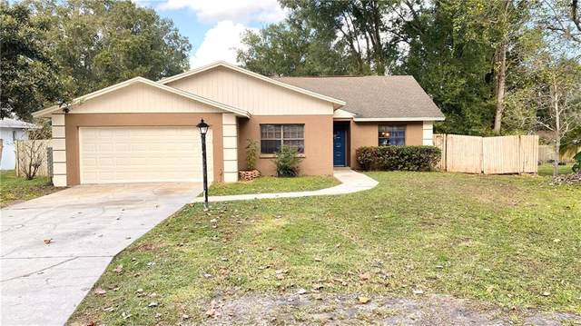 23107 Gingerwood Loop, Land O Lakes, FL 34639 (MLS #T3273696) :: Young Real Estate