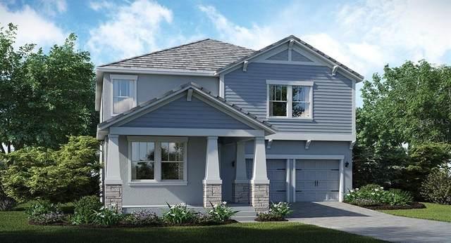 11360 Satire Street, Orlando, FL 32832 (MLS #T3273715) :: Armel Real Estate