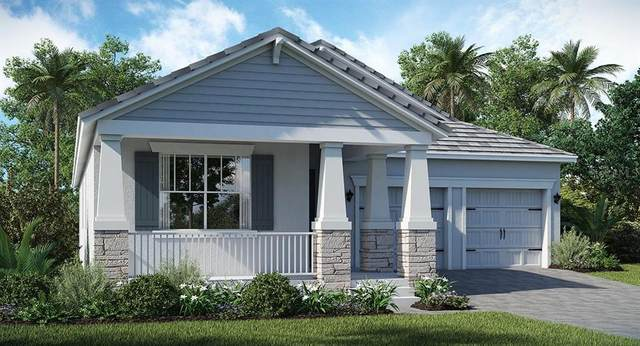 11344 Satire Street, Orlando, FL 32832 (MLS #T3273726) :: Armel Real Estate