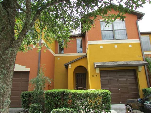 1033 Tullamore Drive, Wesley Chapel, FL 33543 (MLS #T3273742) :: Young Real Estate