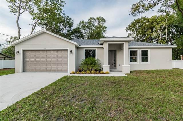 5115 Johnnie Road, Tampa, FL 33624 (MLS #T3273750) :: Homepride Realty Services