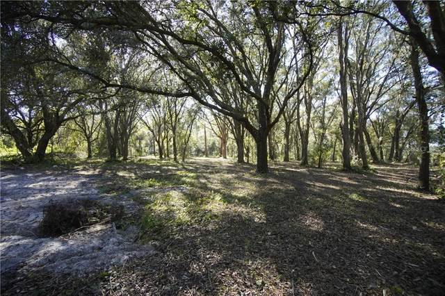 7401 Dormany Loop, Plant City, FL 33565 (MLS #T3273771) :: Florida Real Estate Sellers at Keller Williams Realty