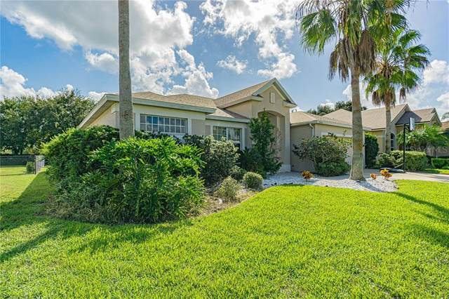 9902 Balsaridge Court, Trinity, FL 34655 (MLS #T3273774) :: RE/MAX Marketing Specialists