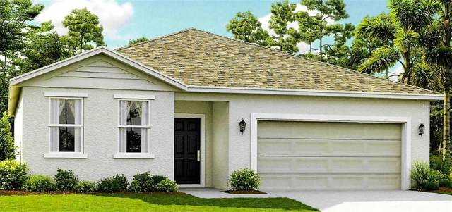 5119 Little Stream Lane, Wesley Chapel, FL 33545 (MLS #T3273782) :: GO Realty