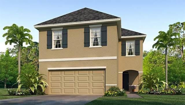 10950 Trailing Vine Drive, Tampa, FL 33610 (MLS #T3273874) :: Burwell Real Estate