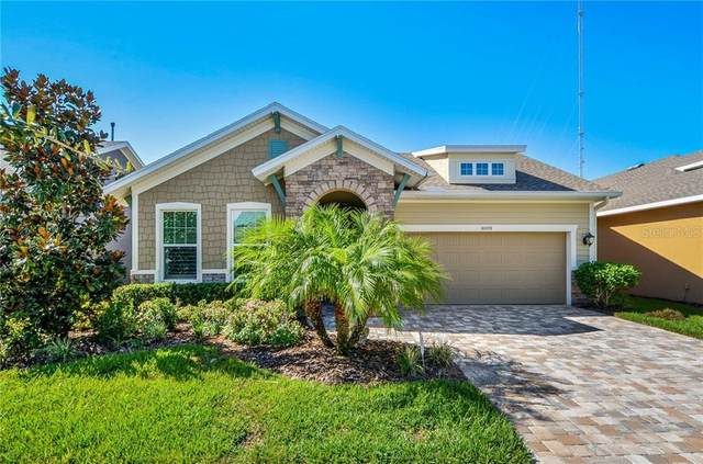 6009 Burrowing Owl Place, Lithia, FL 33547 (MLS #T3273895) :: Pepine Realty