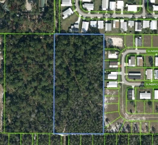 720 Thunderbird Hill Road, Sebring, FL 33872 (MLS #T3274355) :: Sarasota Home Specialists