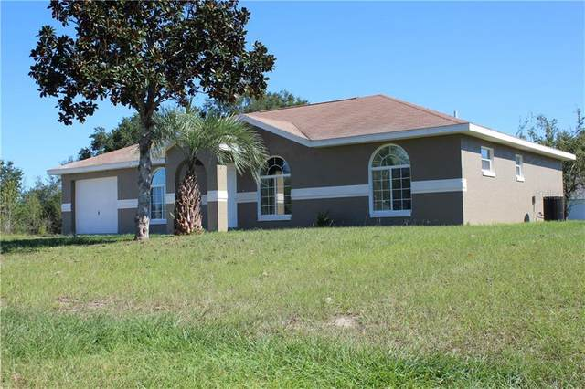 16153 SW 17TH Avenue, Ocala, FL 34473 (MLS #T3274377) :: Key Classic Realty