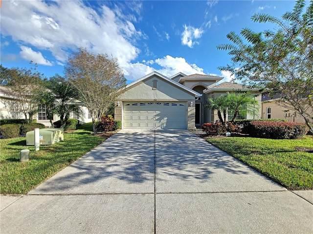 2841 Banyan Hill Lane, Land O Lakes, FL 34639 (MLS #T3274663) :: Griffin Group