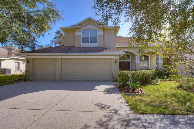 12824 Flamingo Parkway, Spring Hill, FL 34610 (MLS #T3274927) :: Griffin Group