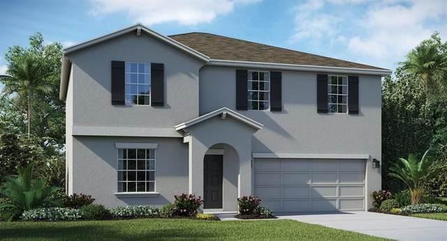 542 Patton Loop, Bartow, FL 33830 (MLS #T3275369) :: Carmena and Associates Realty Group