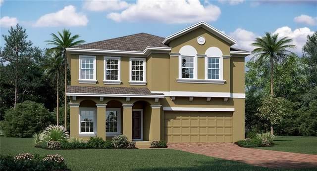 1108 Dora Parc Lane, Mount Dora, FL 32757 (MLS #T3275384) :: Cartwright Realty