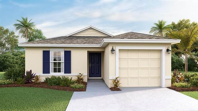 12229 High Rock Way, Parrish, FL 34219 (MLS #T3275457) :: Carmena and Associates Realty Group