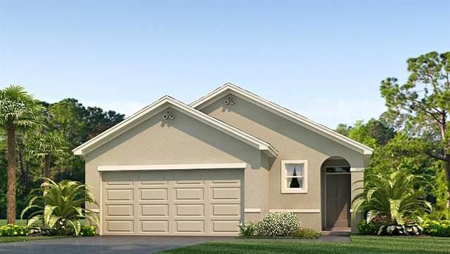 17067 Oval Rum Drive, Wimauma, FL 33598 (MLS #T3275509) :: Bustamante Real Estate