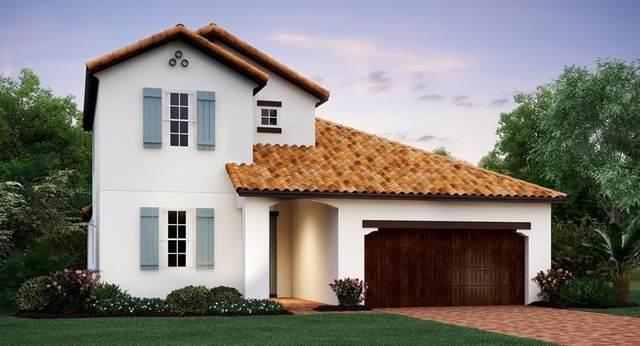 16912 Elbis Cruise Street, Wimauma, FL 33598 (MLS #T3275558) :: Burwell Real Estate