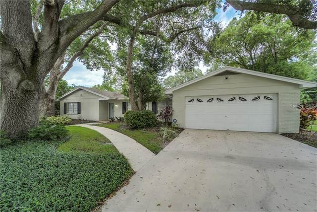 13509 Shady Shores Drive, Tampa, FL 33613 (MLS #T3275560) :: Carmena and Associates Realty Group