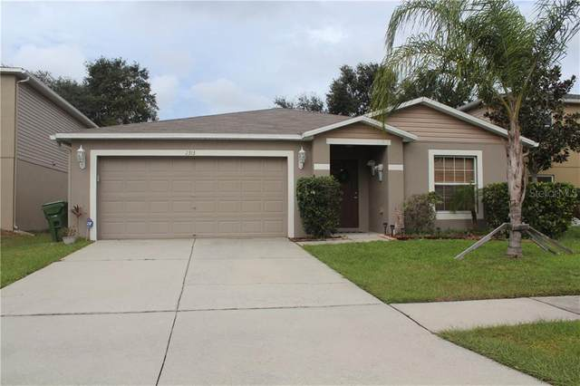 2313 Curzon Way, Odessa, FL 33556 (MLS #T3275621) :: Premier Home Experts