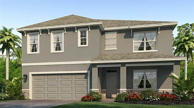 17213 Harvest Moon Way, Bradenton, FL 34211 (MLS #T3276033) :: Bridge Realty Group