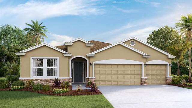 16922 Harvest Moon Way, Bradenton, FL 34211 (MLS #T3276055) :: Sarasota Gulf Coast Realtors