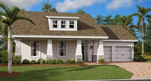 4916 Lotta Court, Saint Cloud, FL 34772 (MLS #T3276061) :: Alpha Equity Team