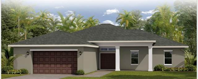 Lot 14 Badali Road, North Port, FL 34286 (MLS #T3276097) :: Delgado Home Team at Keller Williams