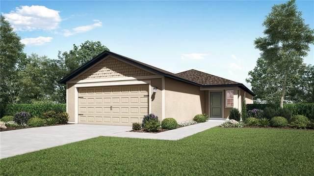 30210 Fedora Circle, Brooksville, FL 34602 (MLS #T3276103) :: The Figueroa Team