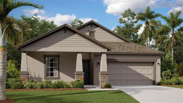 1841 Dumbleton Place, Saint Cloud, FL 34771 (MLS #T3276155) :: Carmena and Associates Realty Group