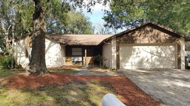 4015 Arroyo Lane, Tampa, FL 33624 (MLS #T3276320) :: Cartwright Realty